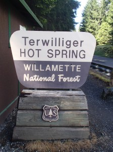 The Terwilliger Hot Springs in the Willamette National Forest