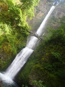 The Multnomah Falls draw a many tourists to its beauty.