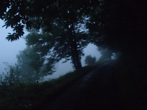The second morning - dark and foggy.
