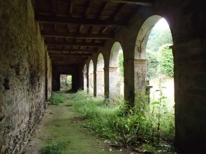 A view of the old cloisters form within.