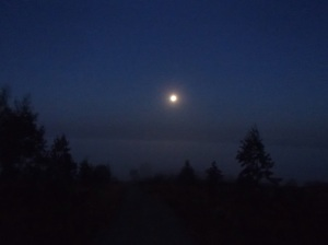 An early morning walk from San Roman lit by the light of the moon with the fog shinning in the distance.