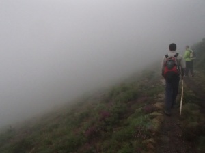 "The blurred horizon whilst walking through ""fog"" on El Camino de Santiago in Spain."