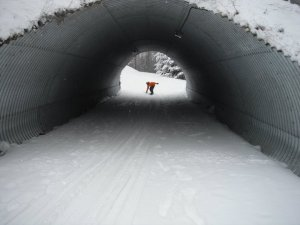 Through the tunnel that led from our hotel to the lift at Shanty Creek.