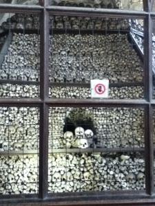 stacks of skulls in Sedlec Ossuary