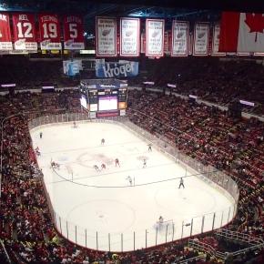 Red Wings Game, SuiteSeats